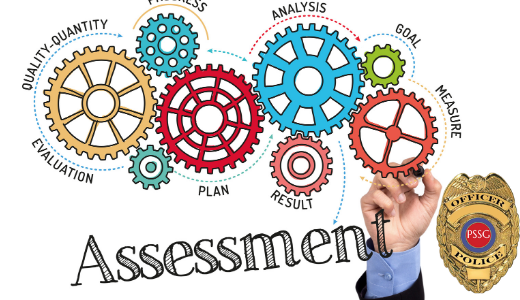 graphic for organizational assessment